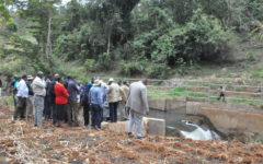 Govt reiterates intentions to prop up irrigation farming